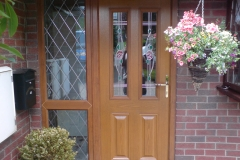 Woodgrain GRP door